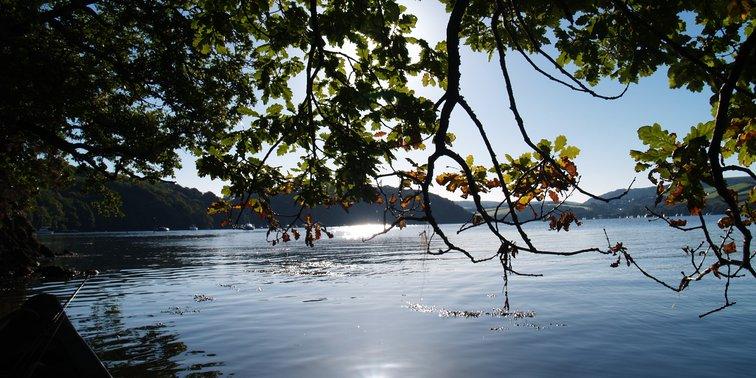 River Dart calm