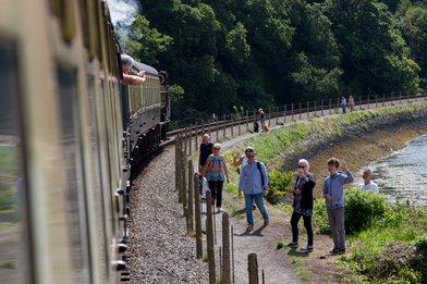 Train on bend Kingswear